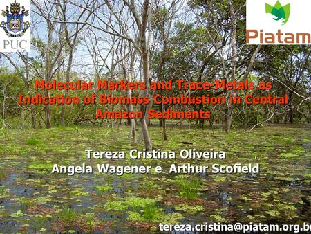 Molecular Markers and Trace-Metals as Indication of Biomass Combustion in Central Amazon Sediments Tereza Cristina Oliveira Angela Wagener e Arthur Scofield.