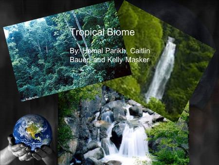 Tropical Biome By: Hemal Parikh, Caitlin Bauer, and Kelly Masker.
