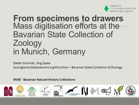 From specimens to drawers Stefan Schmidt, Jörg Spela Zoologische Staatssammlung München – Bavarian State Collection of Zoology Mass digitisation efforts.