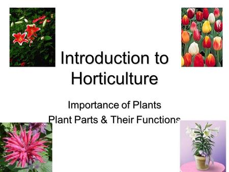 Introduction to Horticulture Importance of Plants Plant Parts & Their Functions.