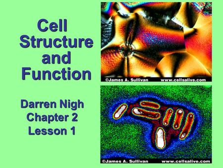 Cell Structure and Function Darren Nigh Chapter 2 Lesson 1.