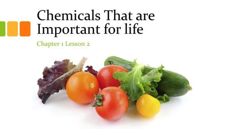 Chemicals That are Important for life Chapter 1 Lesson 2.