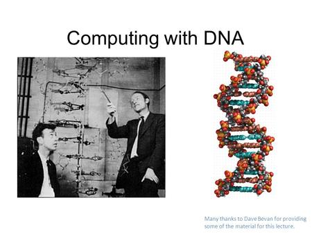 Computing with DNA Many thanks to Dave Bevan for providing some of the material for this lecture.