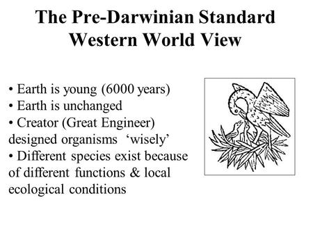 The Pre-Darwinian Standard Western World View Earth is young (6000 years) Earth is unchanged Creator (Great Engineer) designed organisms 'wisely' Different.