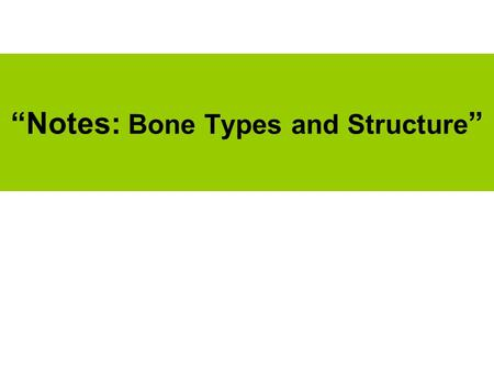 """Notes: Bone Types and Structure "". (1) What are the Bone Regions? Axial –Down the center of body –Skull, vertebral column, rib cage, center pelvis Appendicular."