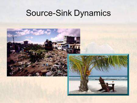 Source-Sink Dynamics. Remember, all landscapes are heterogeneous at some scale Consequently, patch quality is heterogeneous All else being equal, individuals.