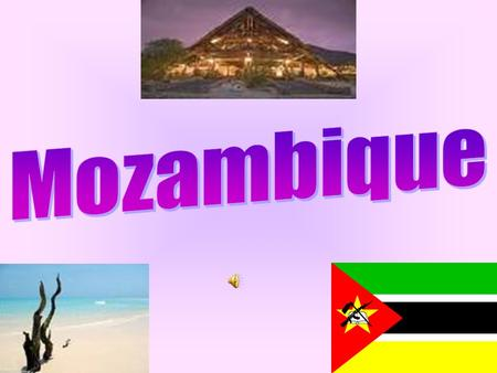 Mozambique is located in Southeastern Africa, boarded by the Indian Ocean to the east, Tanzania, Malawi, Zambia, Zimbabwe, Switzerland and South Africa.