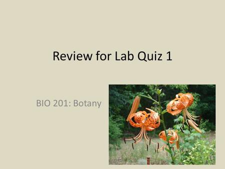 Review for Lab Quiz 1 BIO 201: Botany. Lab 1 - Taxonomic Keys Typically use the dichotomous format Two parallel statements Make a choice of one over the.