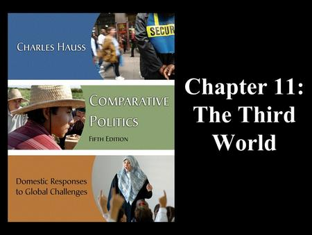 Chapter 11: The Third World. Thinking About The Third World The Basics Poverty Environmental Threats Ethnicity and Conflict Globalization and Structural.