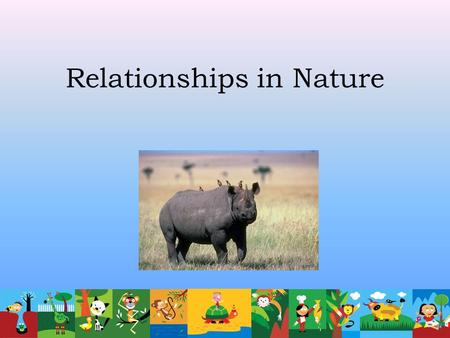 Relationships in Nature. What is symbiosis? What it means: Two organisms that live together Temporarily or for a longer time At least one of the organisms.