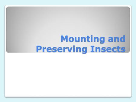 Mounting and Preserving Insects. What do I do after I catch it? After catching an insect, place it in an envelope or vial, be sure to not the location,