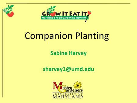Companion Planting Sabine Harvey