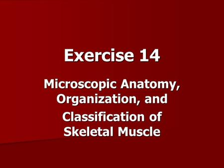 Exercise 14 Microscopic Anatomy, Organization, and Classification of Skeletal Muscle.
