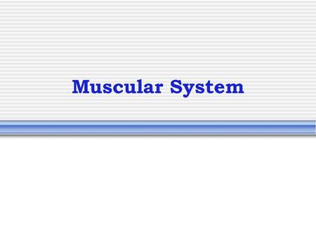Muscular System. Muscle Video Characteristics of Muscles Skeletal and smooth muscle cells are elongated (muscle cell = muscle fiber) Contraction of muscles.