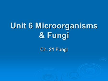 Unit 6 Microorganisms & Fungi Ch. 21 Fungi. What are Fungi?  Fungi are eukaryotic heterotrophs that have cell walls  Chitin - makes up cell walls, a.
