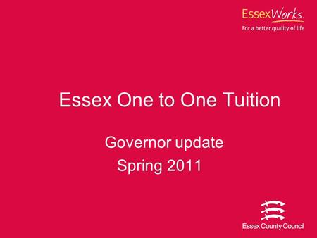 Essex One to One Tuition Governor update Spring 2011.