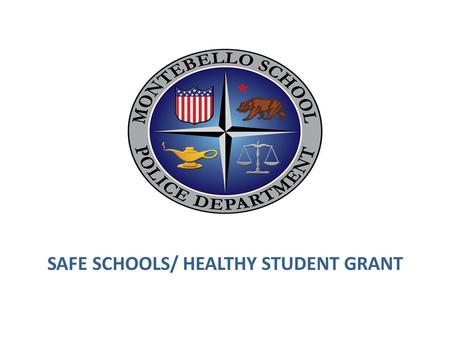 SAFE SCHOOLS/ HEALTHY STUDENT GRANT. OVERVIEW Department history Current organization of School Police Department Safety and Security improvements Ongoing.