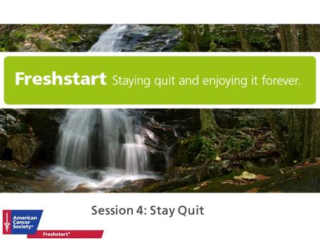Freshstart Facilitator Training Session 4: Stay Quit.