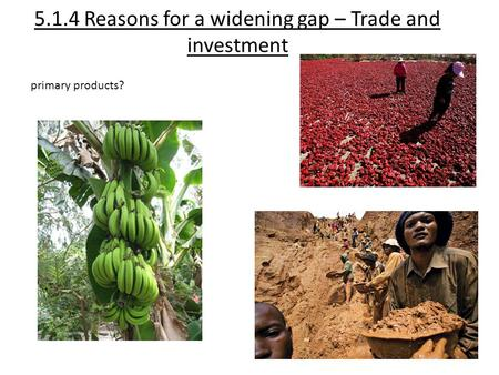 5.1.4 Reasons for a widening gap – Trade and investment primary products?