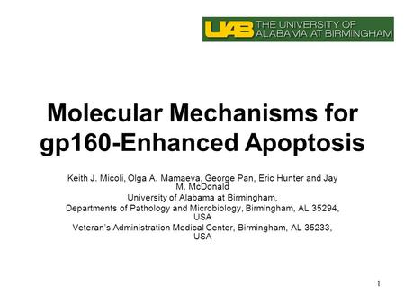 1 Molecular Mechanisms for gp160-Enhanced Apoptosis Keith J. Micoli, Olga A. Mamaeva, George Pan, Eric Hunter and Jay M. McDonald University of Alabama.