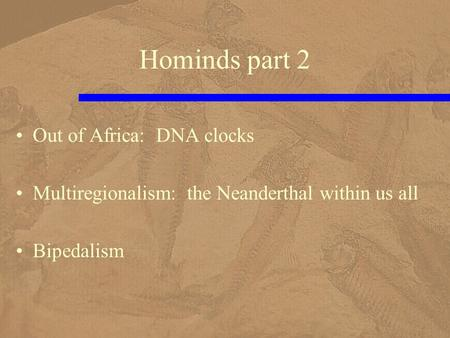 Hominds part 2 Out of Africa: DNA clocks Multiregionalism: the Neanderthal within us all Bipedalism.