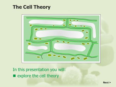 In this presentation you will: explore the cell theory The Cell Theory Next >