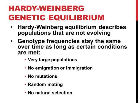 HARDY-WEINBERG GENETIC EQUILIBRIUM Hardy-Weinberg equilibrium describes populations that are not evolving Genotype frequencies stay the same over time.