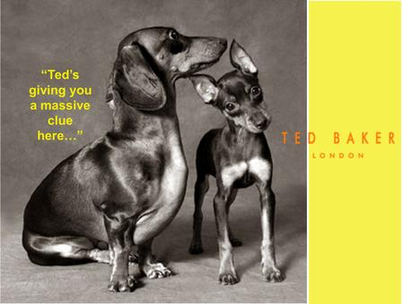 """Ted's giving you a massive clue here…"". ""Allow us to introduce you to Ted..."" ""Ted Baker is one of the UKs fastest growing leading lifestyle brands"""