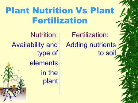 Plant Nutrition Vs Plant Fertilization