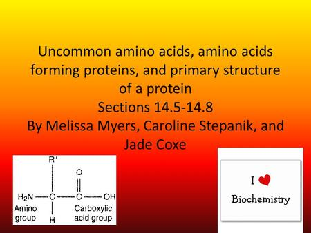Uncommon amino acids, amino acids forming proteins, and primary structure of a protein Sections 14.5-14.8 By Melissa Myers, Caroline Stepanik, and Jade.