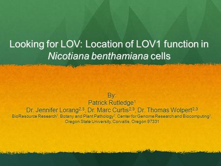 Looking for LOV: Location of LOV1 function in Nicotiana benthamiana cells By: Patrick Rutledge 1 Dr. Jennifer Lorang 2,3, Dr. Marc Curtis 2,3, Dr. Thomas.