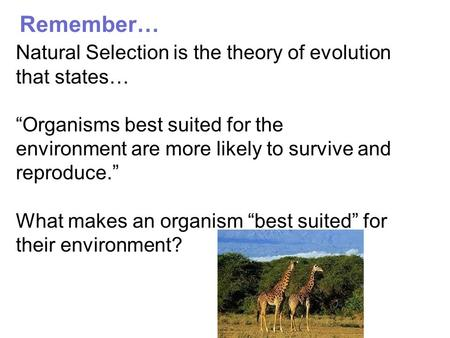 Remember… Natural Selection is the theory of evolution that states…