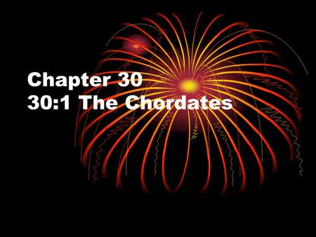 Chapter 30 30:1 The Chordates. Why Chordate? Even though many of the animals in this chapter and future chapters have different characteristics, they.