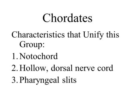 Chordates Characteristics that Unify this Group: 1.Notochord 2.Hollow, dorsal nerve cord 3.Pharyngeal slits.