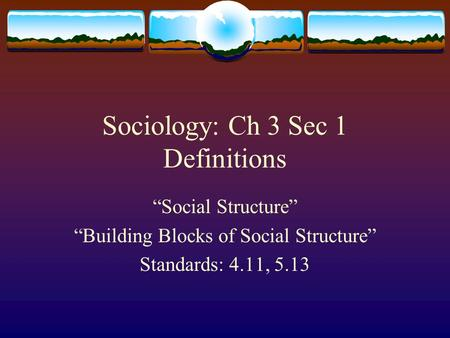 "Sociology: Ch 3 Sec 1 Definitions ""Social Structure"" ""Building Blocks of Social Structure"" Standards: 4.11, 5.13."