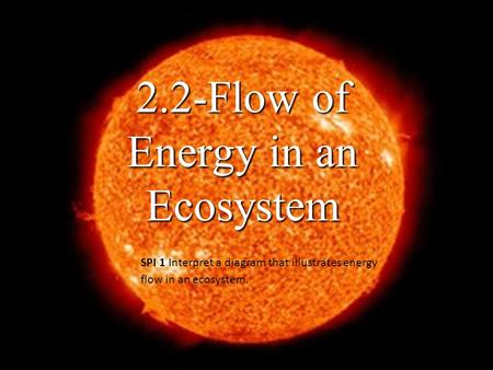 2.2-Flow of Energy in an Ecosystem SPI 1 Interpret a diagram that illustrates energy flow in an ecosystem.