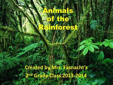 Animals of the Rainforest Created by Mrs. Fasnacht's 2 nd Grade Class 2013-2014.