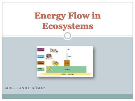 MRS. SANDY GÓMEZ Energy Flow in Ecosystems. Are the feeding relationships between organisms. A Food Chain is:  transfer of food energy from its source.