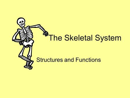 The Skeletal System Structures and Functions. FUNCTIONS Support: Provides a framework for the body Support for soft tissues and a point of attachment.