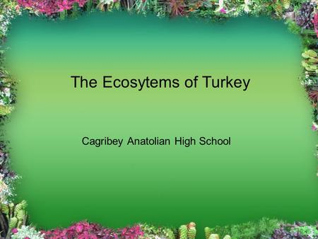 The Ecosytems of Turkey Cagribey Anatolian High School.