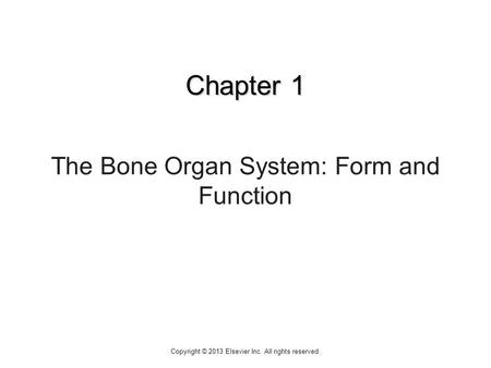 Chapter 1 The Bone Organ System: Form and Function Copyright © 2013 Elsevier Inc. All rights reserved.