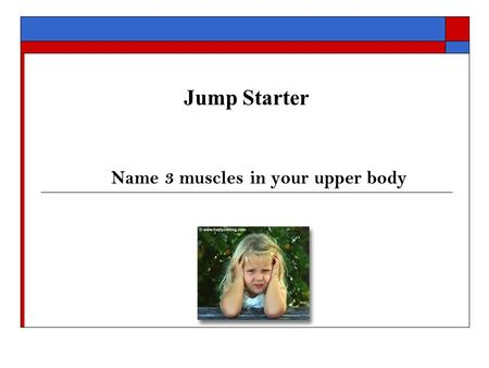 Jump Starter Name 3 muscles in your upper body. Fitness Center Intro Upper Body Machines & Exercises Benefits of Upper Body Weight Training 1. Helps minimize.