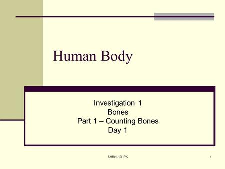 SHBI1L1D1PK1 Human Body Investigation 1 Bones Part 1 – Counting Bones Day 1.