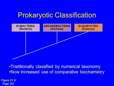 Prokaryotic Classification EUBACTERIA (Bacteria) ARCHAEBACTERIA (Archaea) EUKARYOTES (Eukarya) Traditionally classified by numerical taxonomy Now increased.
