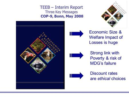 TEEB – Interim Report Three Key Messages COP-9, Bonn, May 2008 Economic Size & Welfare Impact of Losses is huge Strong link with Poverty & risk of MDG's.