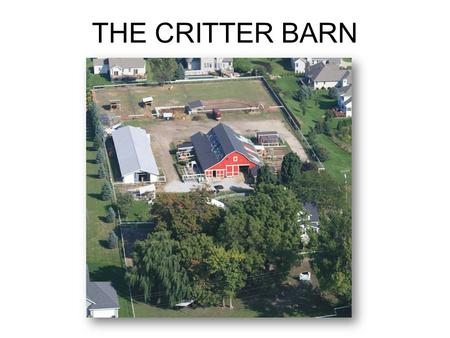 THE CRITTER BARN. Preserving Our Educational Mission The Critter Barn evolved from my own children's experiences with the animals.