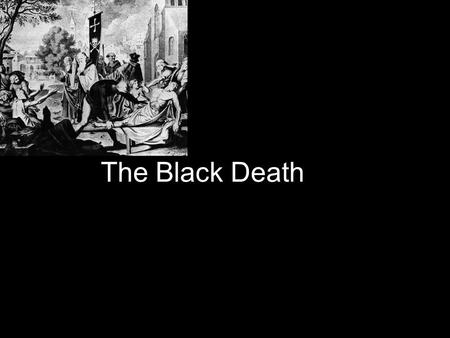 The Black Death. Microscopic view How Its started Fleas in rat muliply and the rat bites the human and then you get the black death.