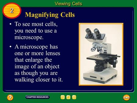 Magnifying Cells To see most cells, you need to use a microscope. A microscope has one or more lenses that enlarge the image of an object as though you.