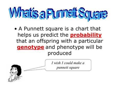 A Punnett square is a chart that helps us predict the probability that an offspring with a particular genotype and phenotype will be produced I wish I.
