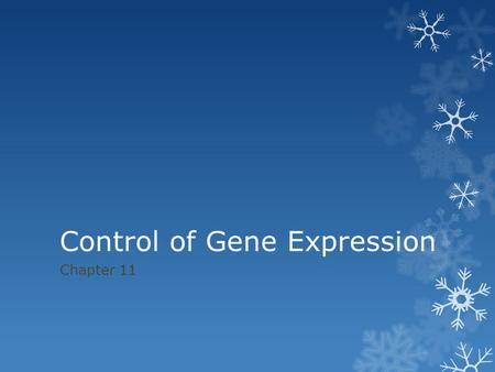 Control of Gene Expression Chapter 11. 11.1 Proteins interacting w/ DNA turn Prokaryotic genes on or off in response to environmental changes  Gene Regulation: